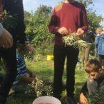 """5.-7. klašu skolēni iesaistījās vides iniciatīvā """"100 labie darbi Latvijai"""""""